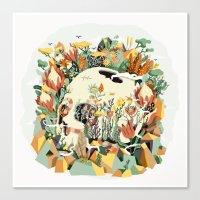 Skull & Fynbos Canvas Print