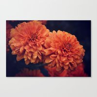 If A Flower Was The Sun Canvas Print