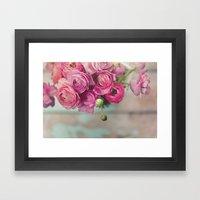 Pink Ranunculus  Framed Art Print