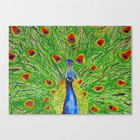 The Noble Peafowl Canvas Print
