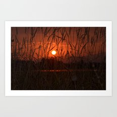 Shining through Art Print
