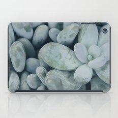 Moonstones iPad Case