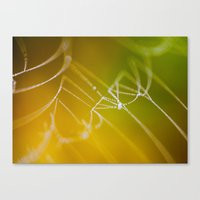 The Spiders Web - Fall Colors Canvas Print