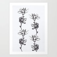 Magnolia in black and white Art Print