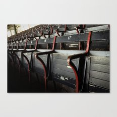 For love of the game Canvas Print