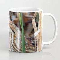 American Bittern - Take Two Mug