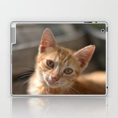 You Have Nothing To Do? Laptop & iPad Skin