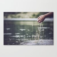 agua que no has de beber déjala correr...pues así con todo Canvas Print