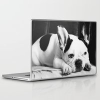french Laptop & iPad Skins featuring French Bulldog by Falko Follert Art-FF77