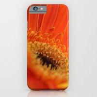 Gerbera Daisy iPhone 6 Slim Case