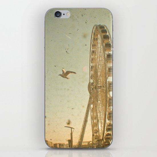Bird's Eye View iPhone & iPod Skin