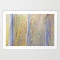 Silver Birch In The Autu… Art Print