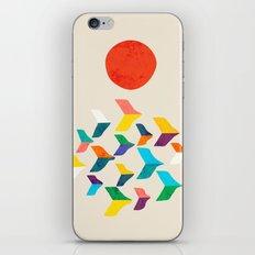 Great Bird Migration iPhone & iPod Skin