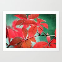 A Splash Of Red Art Print