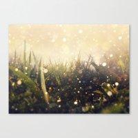 Hidden In The Magic Gard… Canvas Print