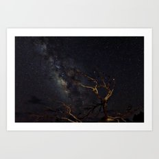 Milky Way And Lighted Tree Art Print