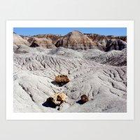 The Painted Desert & Pet… Art Print