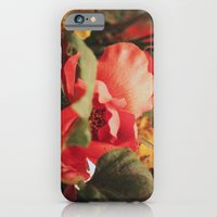 iPhone & iPod Case featuring Vintage Love by AZerhusen