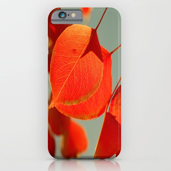 Orange iPhone & iPod Case