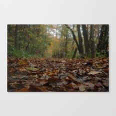 A quiet walk. Canvas Print