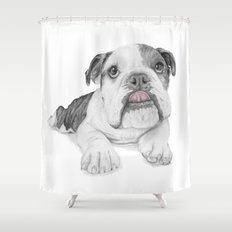 A Bulldog Puppy Shower Curtain