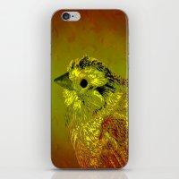 Amber Bird iPhone & iPod Skin