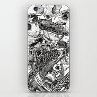 Animal Skulls iPhone & iPod Skin