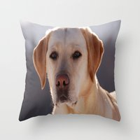 Portrait of A Golden Labrador Retriever Throw Pillow