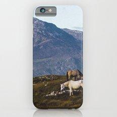 Connemara  - Horse and Mountains Slim Case iPhone 6s