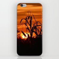 Silhouttes in a Sunrise iPhone & iPod Skin