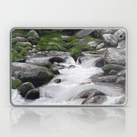 Waterville #4 Laptop & iPad Skin