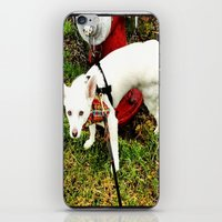 Leave Your Mark iPhone & iPod Skin
