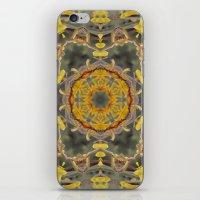 Kangaroo Paw Kaleidoscop… iPhone & iPod Skin