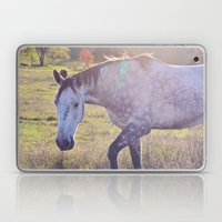 Star Horse Laptop & iPad Skin