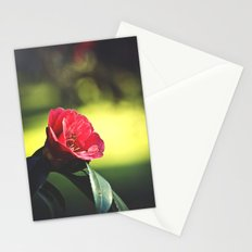 A Beautiful Evening Stationery Cards
