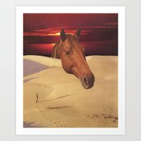 equestrian dawn Art Print