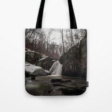 Falling Branch  Tote Bag