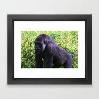 GORILLA - Silverback Framed Art Print
