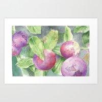 Grape Art Print