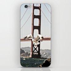 BAY GULLS iPhone & iPod Skin