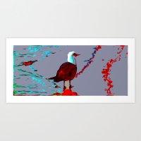 Beach Gull Art Print