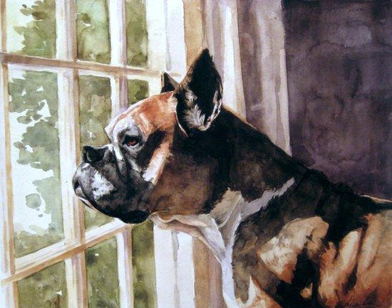 Bulldog Waiting  Canvas Print