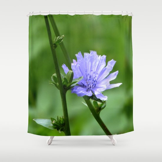 Nature S Garden Purple And Green Shower Curtain By Minx267