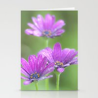 Comos Flowers Stationery Cards