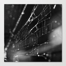 webbing Canvas Print