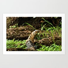 Hi there, I'm a lizard! Art Print