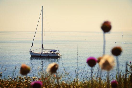 Sunset Sailing Art Print