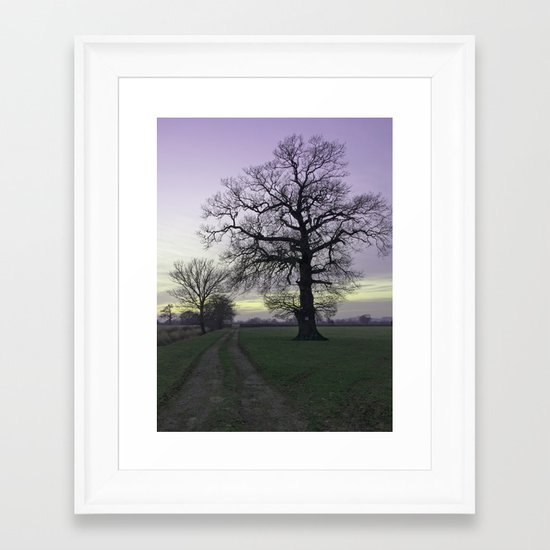 evening light... Framed Art Print