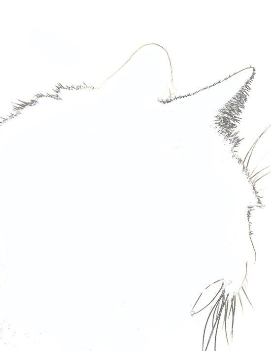 Cat Silhouette 02 Art Print