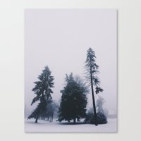 Alone In December Canvas Print